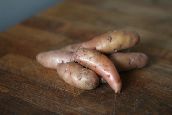 Pink Fir Apple Potatoes